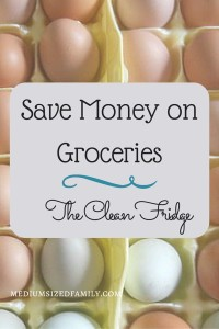 Save Money on Groceries The Clean Fridge