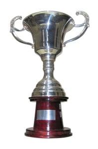 perfect parent trophy