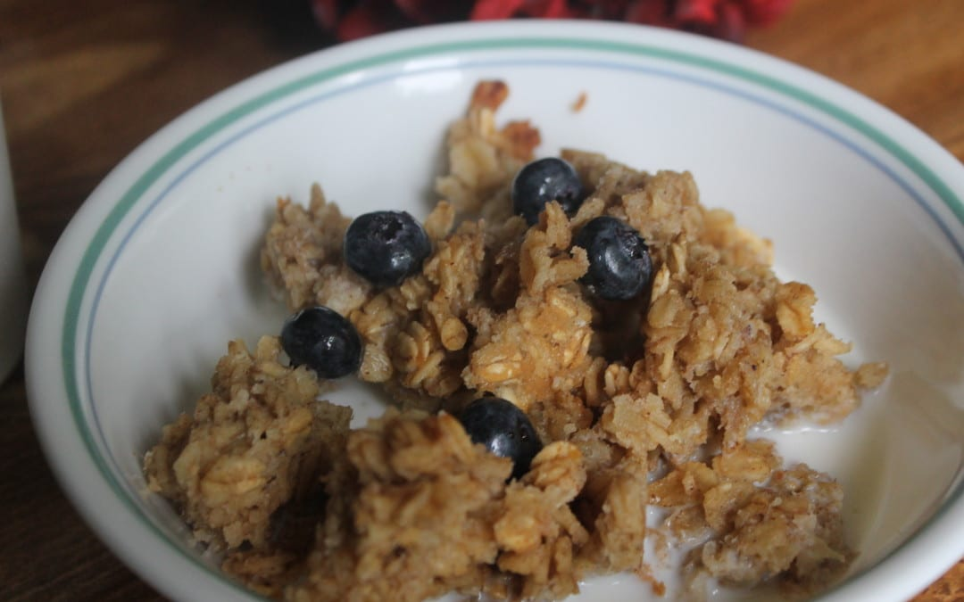 Yummy Baked Oatmeal Casserole (Super Frugal and So Simple!)