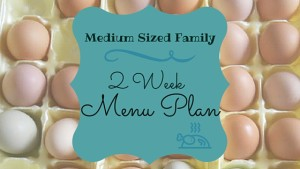 2 Week Menu Plan, Meal Plan