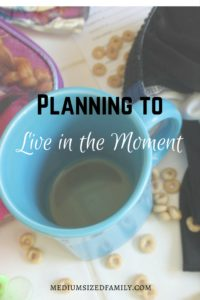 Planning to live in the moment.  We all want to spend our time living in the moment and enjoying life.  But the ironic thing is that we actually have to plan ahead to make it happen more often.