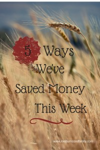 5 Ways We've Saved Money This Week: Simple #frugal ideas you can incorporate into your family life.