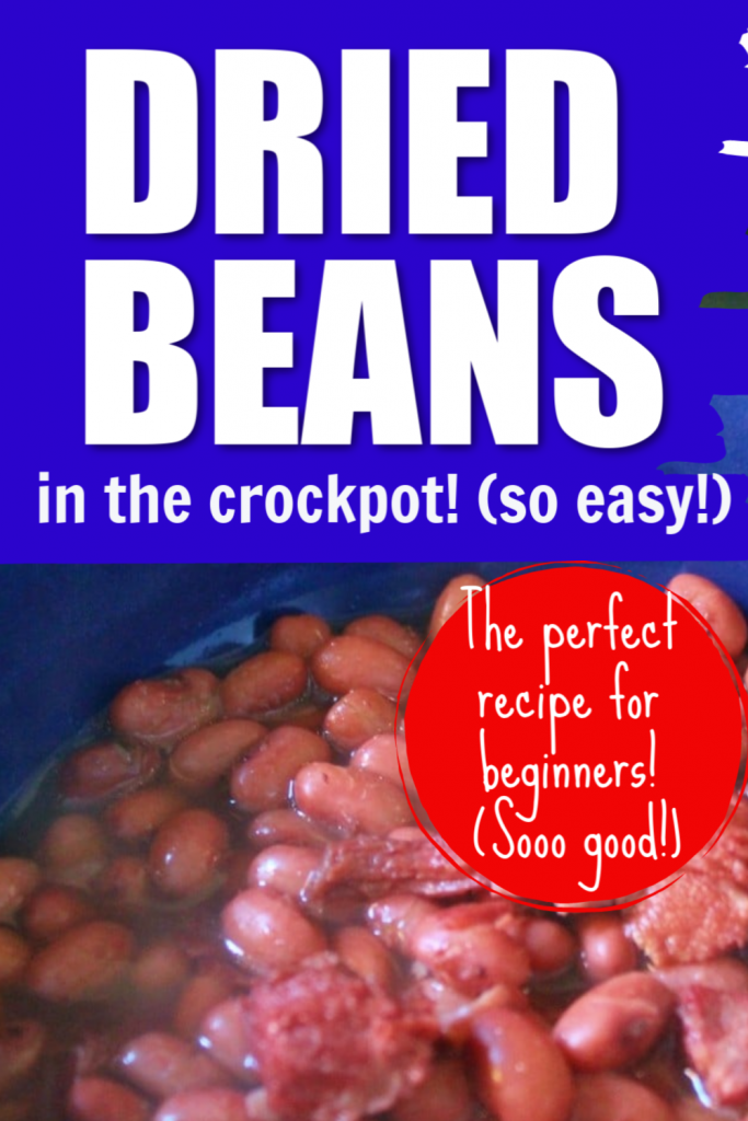 Need to learn how to cook dried beans in the crock pot or slow cooker? This ham and beans recipe is the perfect recipe for beginners. Use those bags of dried beans with this delicious but easy recipe.