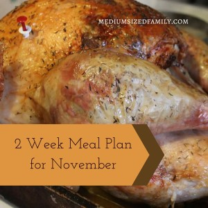 2 Week Meal Plan for November