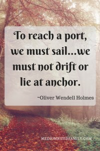 To reach a port, we must sail...we must not drift or lie at anchor.