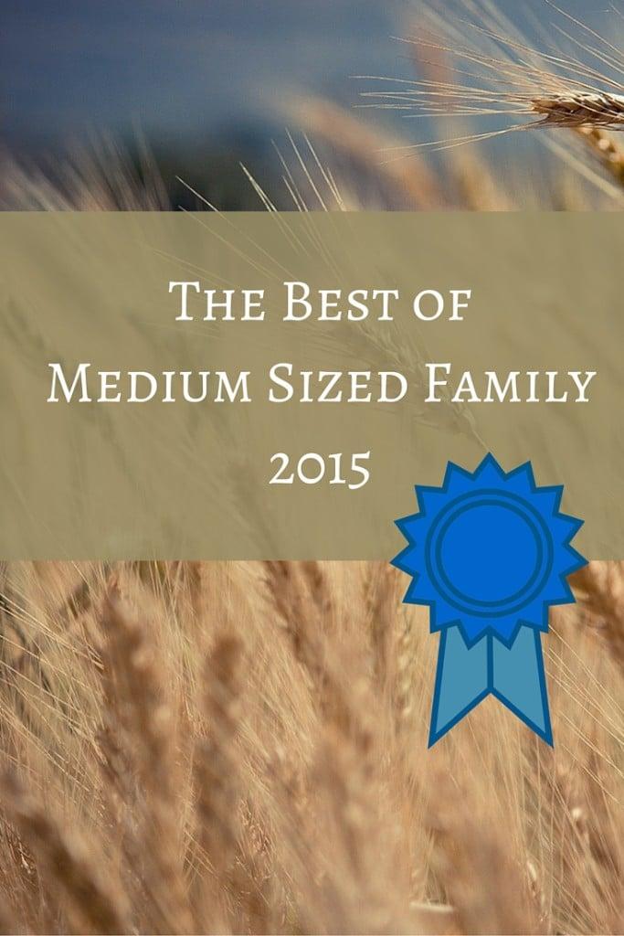 Best of Medium Sized Family 2015 - Pinterest