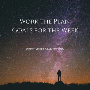 Work the Plan-Goals for the Week