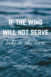 If the wind will not serve, take to the oars.