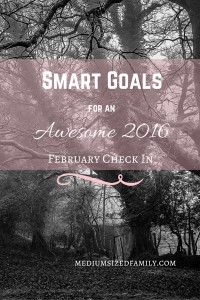 Smart Goals February Check In