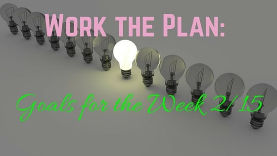 Work the Plan: Goals for the Week 2/15
