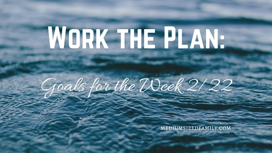 Work the Plan: Goals for the Week 2/22