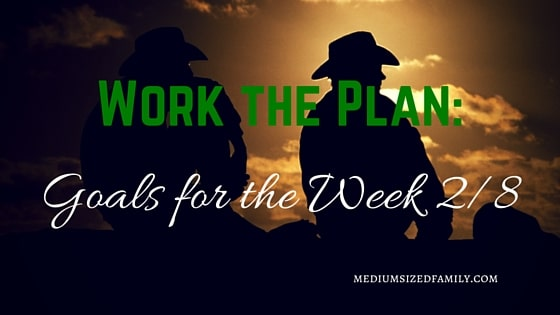 Work the Plan: Goals for the Week 2/8
