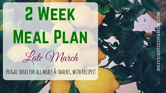 2 Week Meal Plan for Late March