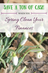 Save a ton of cash when you spring clean your finances. This list will help you find the areas of your budget where you can save big!