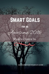 March check in for our BHAG and SMART goals for 2016