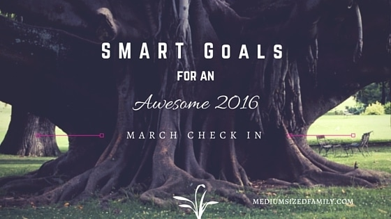 My S.M.A.R.T. Yearly Goals – March Check In