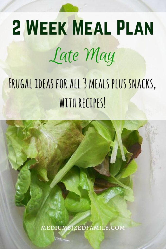 2 Week Meal Plan for late May. Get frugal menu plan ideas on a budget. These ideas are perfect for beginners and will help your family enjoy meal time with less stress. Great way to save money!