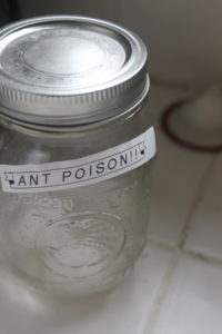 Homemade frugal ant poison