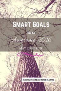 Smart Goals May Check In: This family is marching on towards their big goal of paying off debt See how their #yearofno is getting them where they want to be.