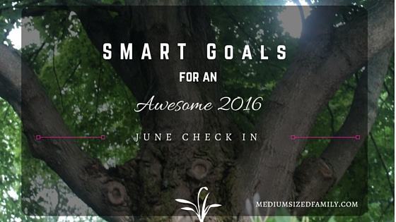 My S.M.A.R.T. Yearly Goals – June Check In