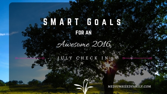 My S.M.A.R.T. Yearly Goals – July Check In