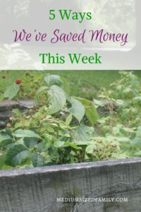5 Ways We've Saved Money This Week 45: Looking for ways to save money in your home? These weekly tips are helping this family dig out of debt.