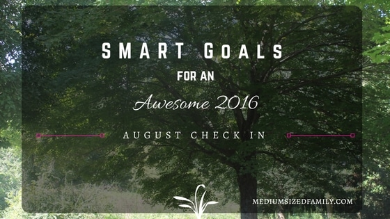 Smart Goals August Check In