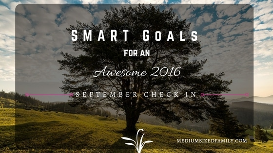 My S.M.A.R.T. Yearly Goals: September Check In