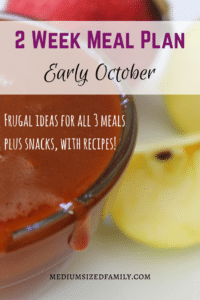 2 Week Meal Plan for Early October. Check out how this family eats for 2 whole weeks. It includes all of the meals and snacks, not just a dinner plan. Plus you get links to recipes to try out.