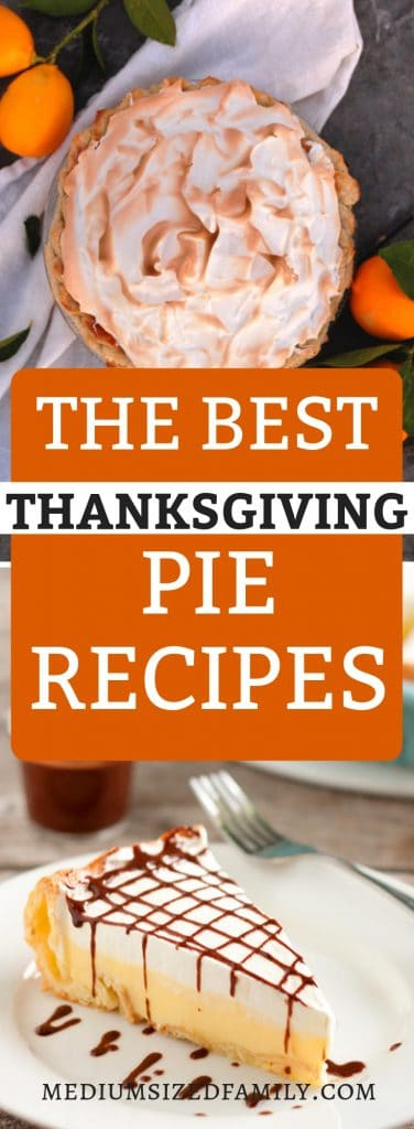 These easy Thanksgiving Pie recipe ideas will help you bring the best unique dish to the meal! But don't worry. any of these pies are sure hits this year!