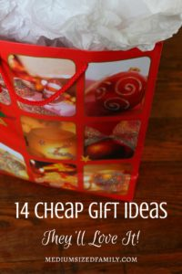 14 Cheap Gift Ideas Guaranteed to Be Winners. Need cheap gift ideas for your Yankee Swap, Dirty Santa, White Elephant, or whatever you call it? These gifts also work for teachers, coworkers, or anyone you want to show some appreciation to (without going into debt). Some different ideas here.