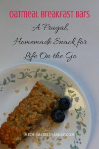 Oatmeal Breakfast Bars: Looking for an easy oatmeal breakfast bars recipe? This simple recipe is a great frugal way to have a snack on hand for on the go living. You'll love using up leftover fruit in this delicious recipe.