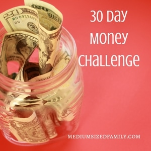 The Money Challenge: Secure Your Savings and Find Peace in the New Year