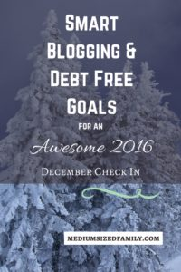 One more check in of our 2016 SMART goals. We have a BHAG for paying off a big chunk of debt. I've also set goals for my blogging journey. See how I'm reaching my goals and which ones we won't quite make in 2016.