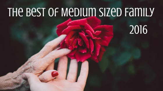 The Best of Medium Sized Family 2016