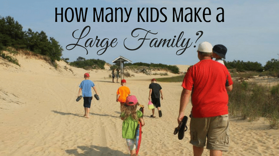 How Many Kids Do You Need to Reach the Large Family Definition