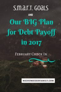 Our Big Plan for Debt Payoff February Check In
