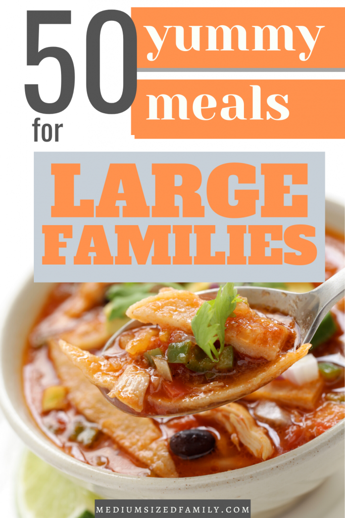 Feeding a crowd? Get these meals for large families. You'll love how they fit the budget...because they're super cheap but still delicious. So easy, and many are crockpot friendly.