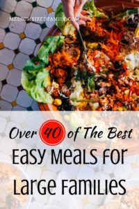 You need this resource in your life! Tons of easy meals for large families that they'll actually eat.