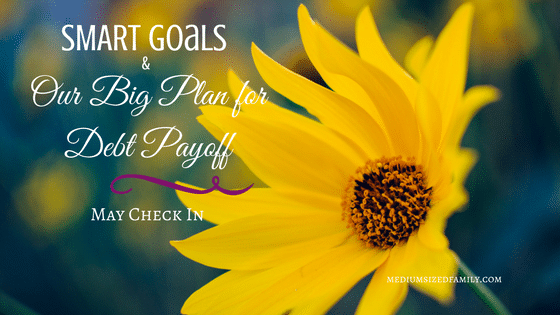 May Check In: Our SMART Goals and Big Debt Payoff Plan