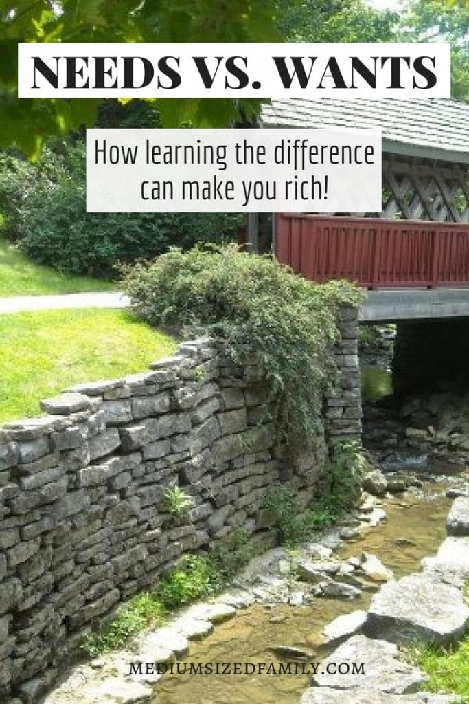 Learn the difference between needs and wants and you'll be rich! These activities for teens and adults will make your budget happy. With quotes and ideas for deciding what's best for you.