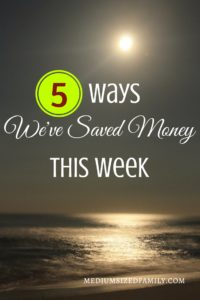 Lots of money saving tips every week on Friday!  This week's tips are about saving on travel with the family.