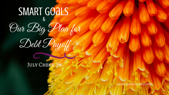 July Check In: Our SMART Goals and Big Debt Payoff Plan