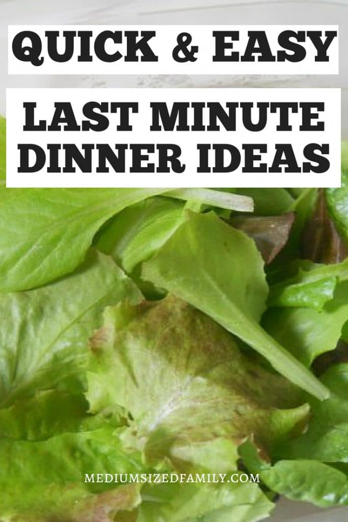 Grab these quick and easy last minute dinner ideas!  Get simple healthy meals for families on the go.  #dinner