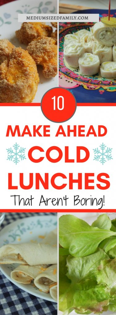 You'll have enough make ahead cold lunches for the week with these recipes!