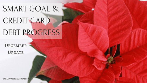 December Check In: SMART Goals and a BIG Debt Payoff Plan