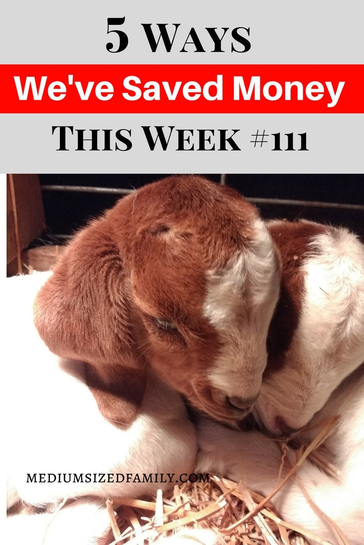 5 Ways We've Saved Money This Week 111 More ways to save money every single week!