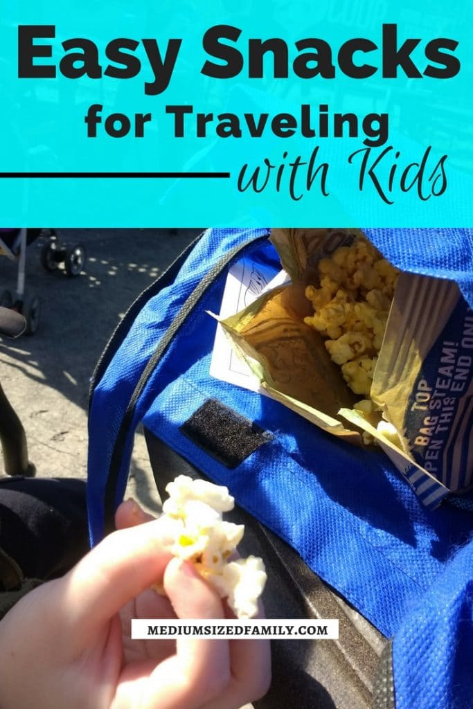 Snacks for traveling with kids that will save you money! Get homemade snack ideas and simple ways to build it into your life.