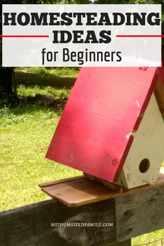 These homesteading ideas for beginners will help you get the frugal skills you need. Whether your goal is a more self sufficient life or you want to raise animals and DIY in your urban area, here you can read how to guides for all of it! #homesteading