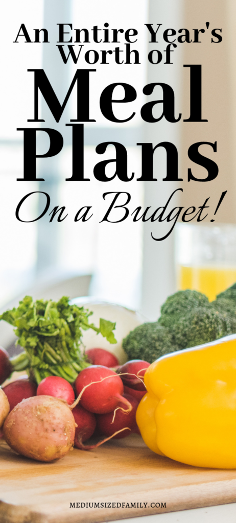 Meal plans on a budget...here you'll find everything you need for an entire year!
